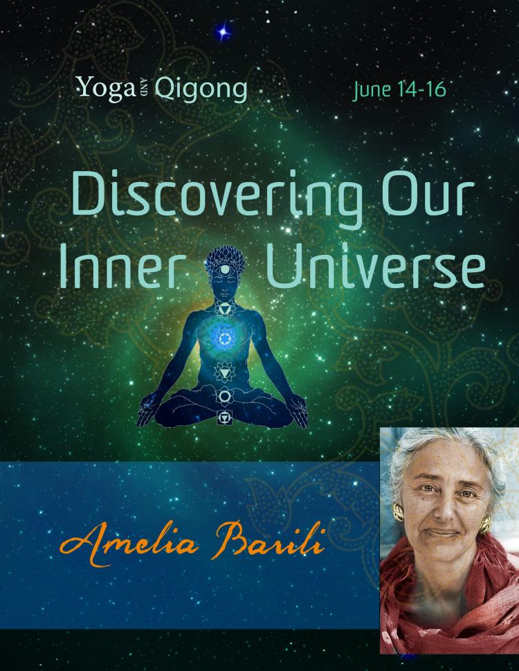 Discovering Our Inner Universecard Amelia Barili Workshop